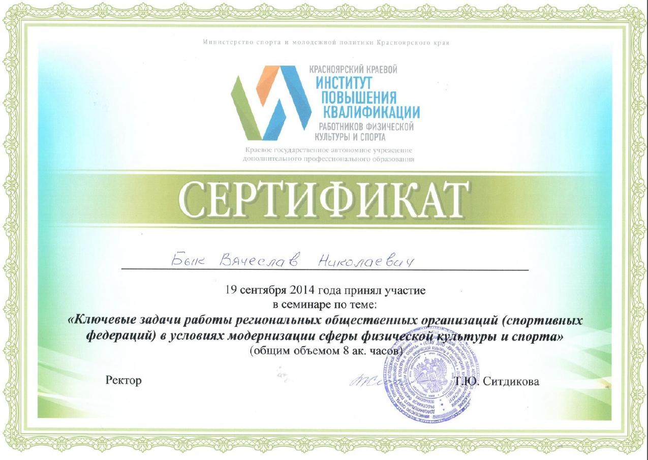 Сертификат, Бык В.Н. 2014 год, Институт повышения квалификации